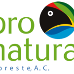logo-pronatura